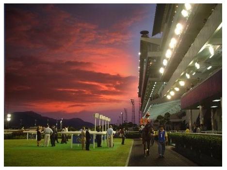 マカオ競馬賭け金2割増ペース―今年