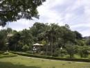 緑豊かな都会のオアシスとして市民の憩いの場となっているカモンエス公園—本紙撮影