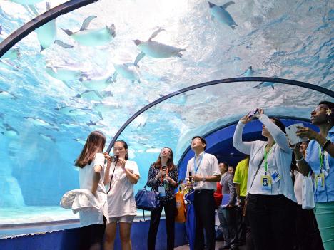 APEC視察団が広東省珠海市の横琴新区を訪問