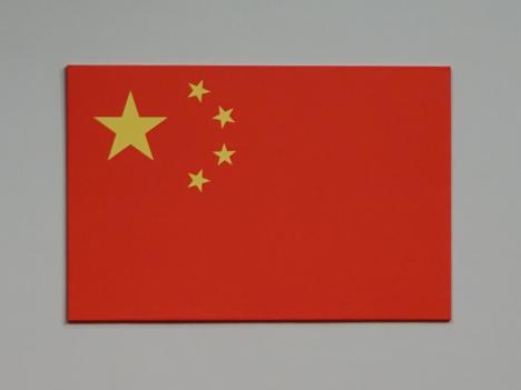 一部航空会社がネパールから中国への帰国便を大幅値上げ=現地中国大使館「災害の利益化は国家イメージを毀損する行為」