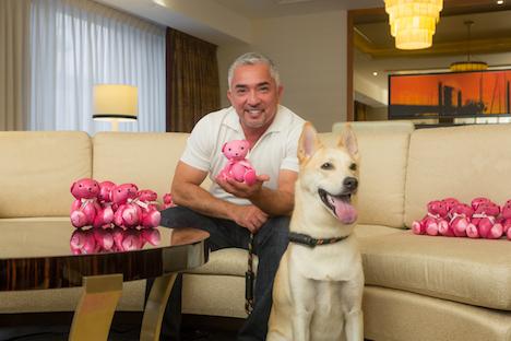 コンラッドマカオ、乳がん啓発活動をサポート=1ヶ月で300万円の募金集まる