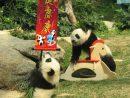 毎週日曜日午後に一般公開されることが決まった双子のオスの赤ちゃんパンダの健健と康康=マカオジャイアントパンダパビリオン(写真:IACM)
