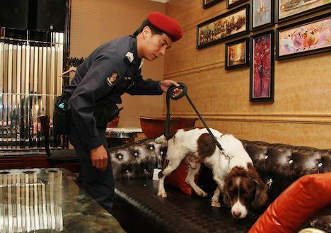 警察犬による調査の様子(写真:マカオ警察総局)