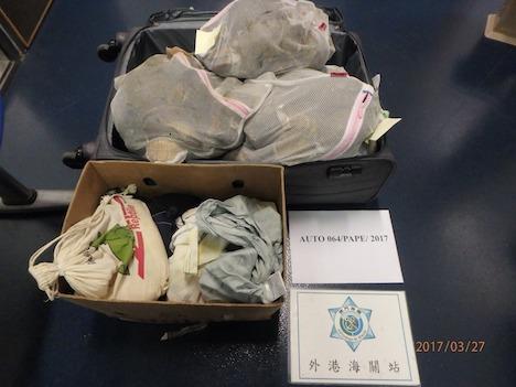 マカオ税関、ヘビとカメの密輸摘発…香港旅客がハンドキャリーで持ち込み