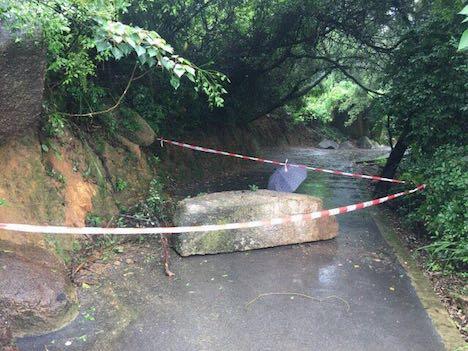 マカオ各地で落石や倒木事故…けが人なし=連日の降雨が原因