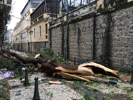 <台風13号>マカオで甚大な被害…5人死亡、153人ケガ