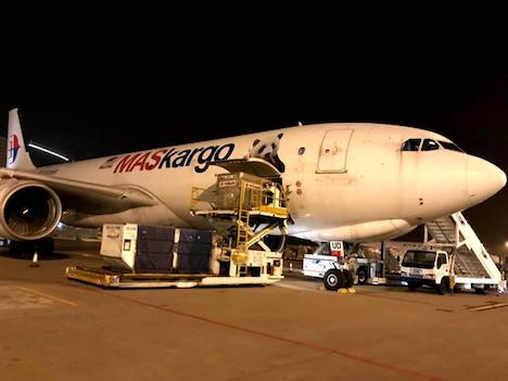 マカオ国際空港に駐機中のマレーシア航空の貨物専用機(写真:CAM)