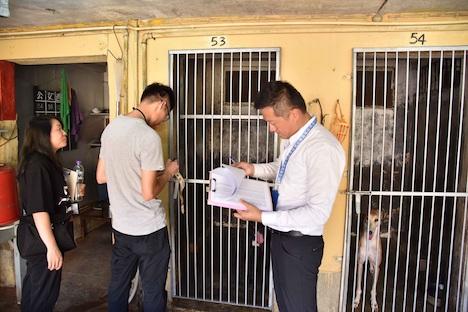 ドッグレース場に遺棄されたレース犬の状況及び犬舎の環境を確認する市政署(当時名称:民政総署)の職員(資料)=2018年7月(写真:IAM)