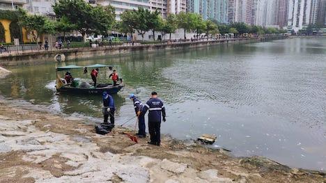 筷子基北灣における死んだ魚の回収作業及び調査の様子(写真:マカオ政府海事及水務局/環境保護局)